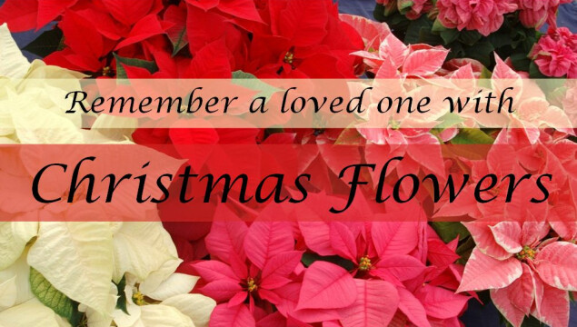 Donate toward the Christmas Flowers by December 8. Click to learn more.