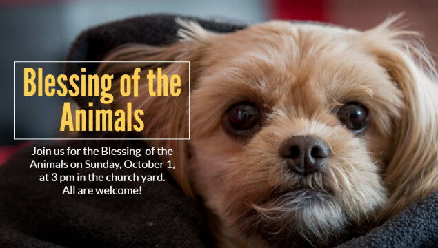 Join us for the Blessing of the Animals on October 1 at 3 pm